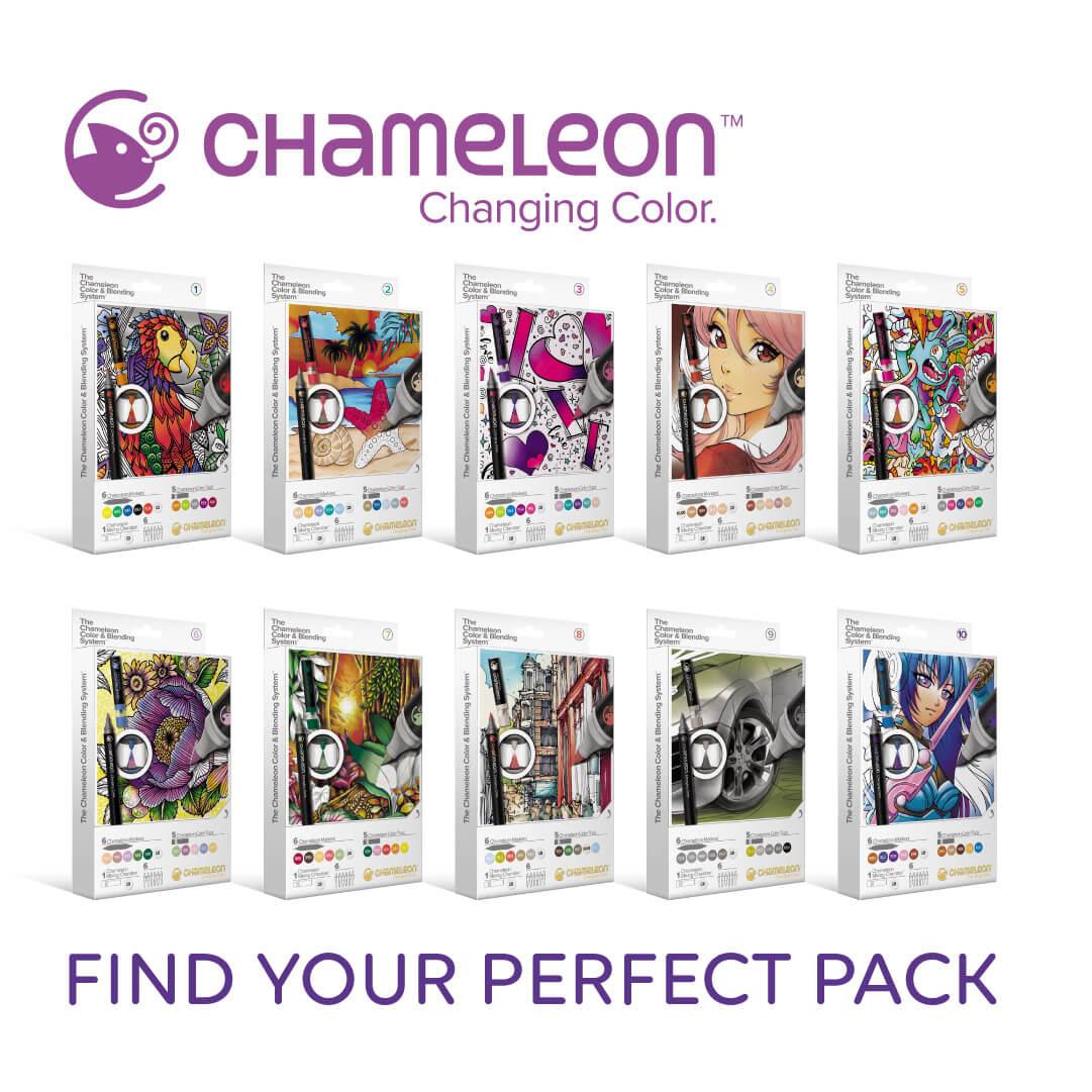Chameleon CBS panel 1.jpg